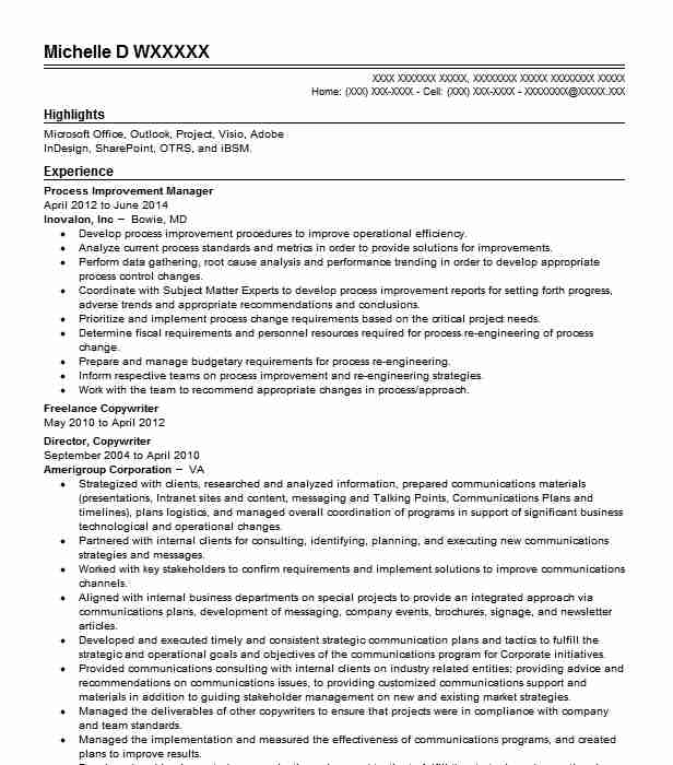 Process Improvement Manager Project Manager Resume Example