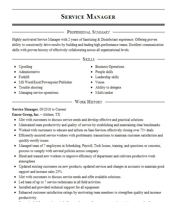 service manager resume example laser options