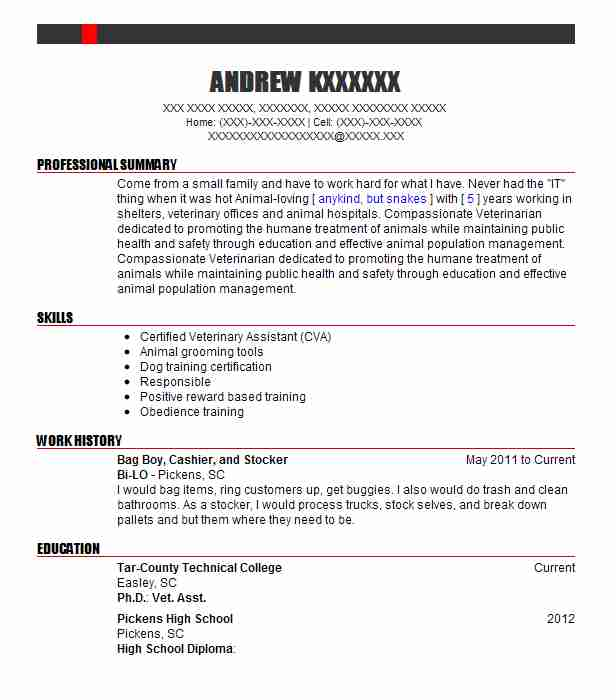 bag boy cashier and stocker - Marine Resume Examples