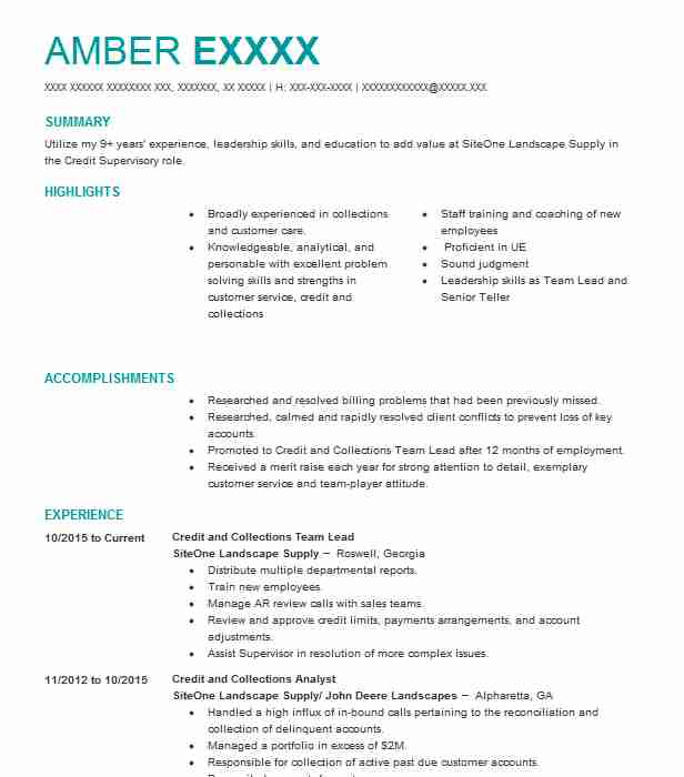 credit and collections team lead - Objective For Bank Teller Resume