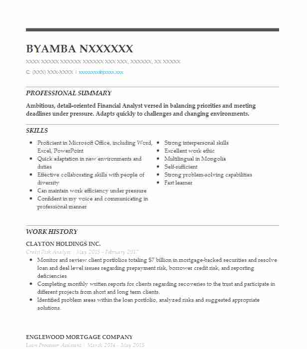 credit risk analyst resume sample