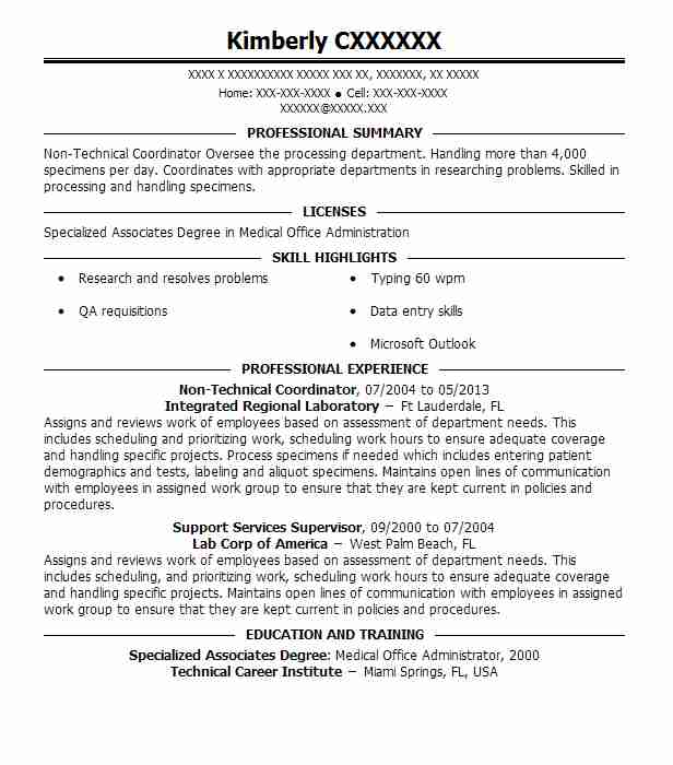 project manager  non technical  resume example hd supply