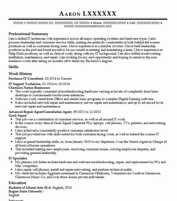 freelance consultant resume example recreative solution