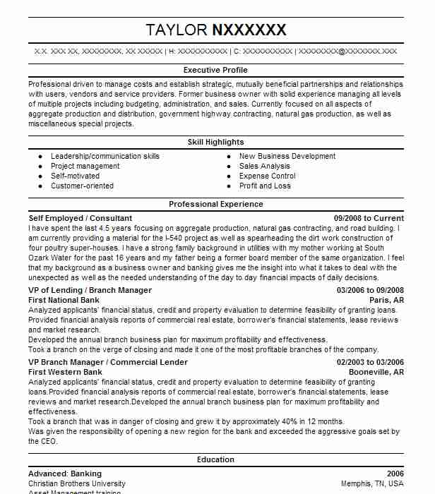 self employed consultant resume example independent data