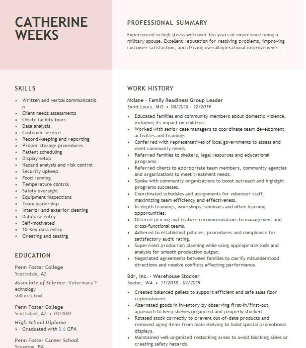 family readiness group leader resume example frg