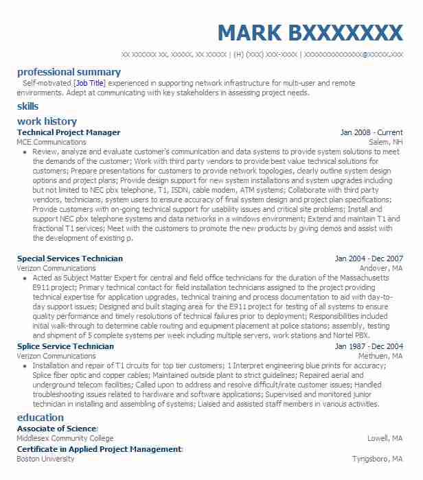 best technical project manager resume example