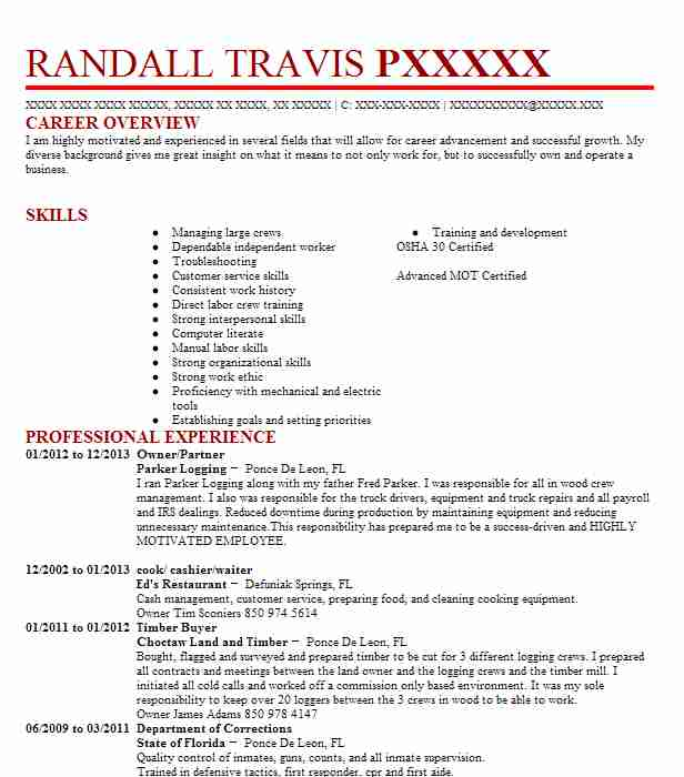Owner/Partner  Mover Resume