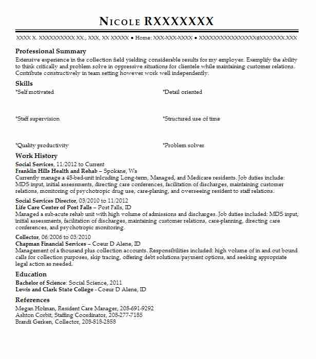 Professional resume for social services