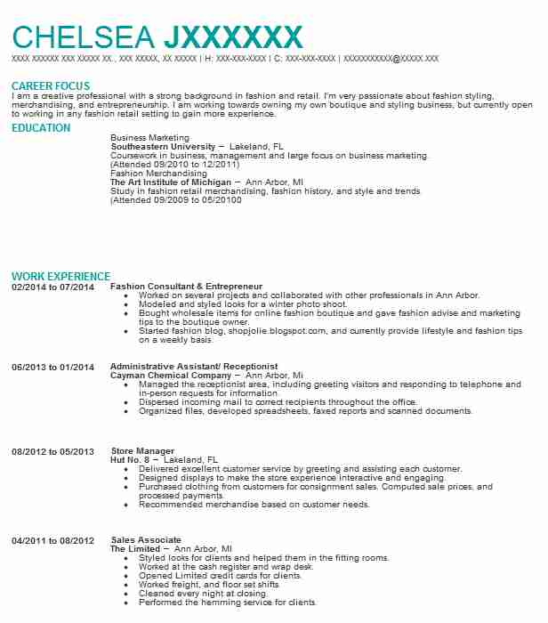 entrepreneur  sales consultant resume example the portable