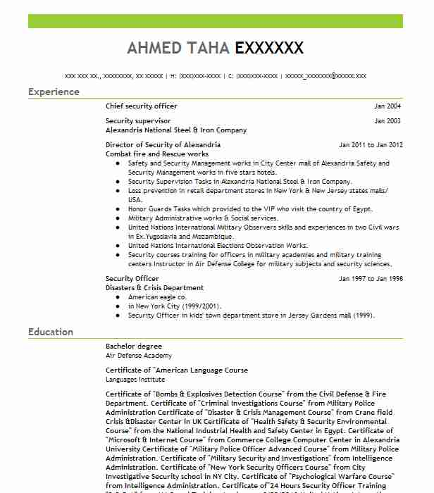 chief security officer resume sample