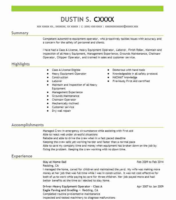 stay at home dad - Stay At Home Dad Resume
