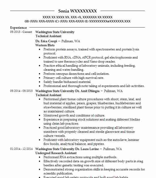Technical Writer Resume Objective: Technical Assistant Resume Sample