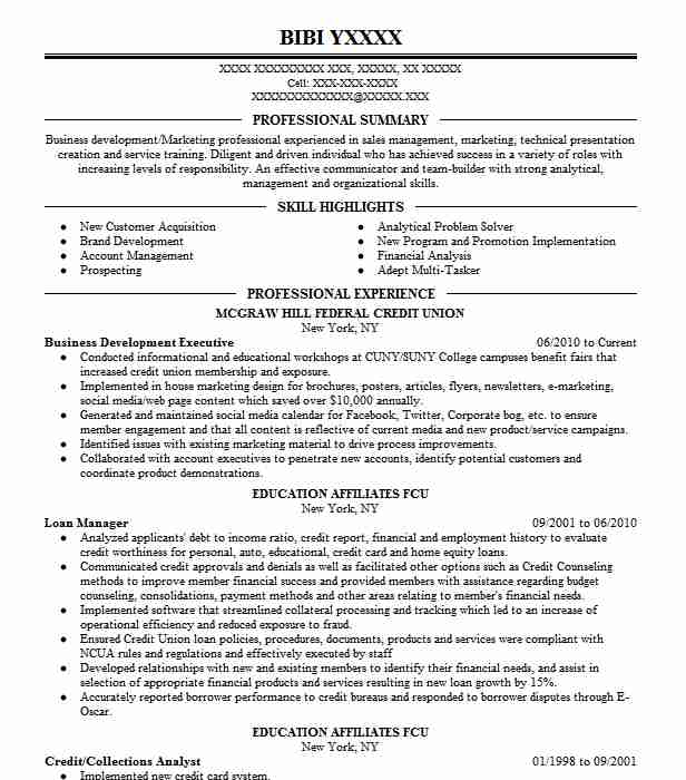 business development executive resume sample