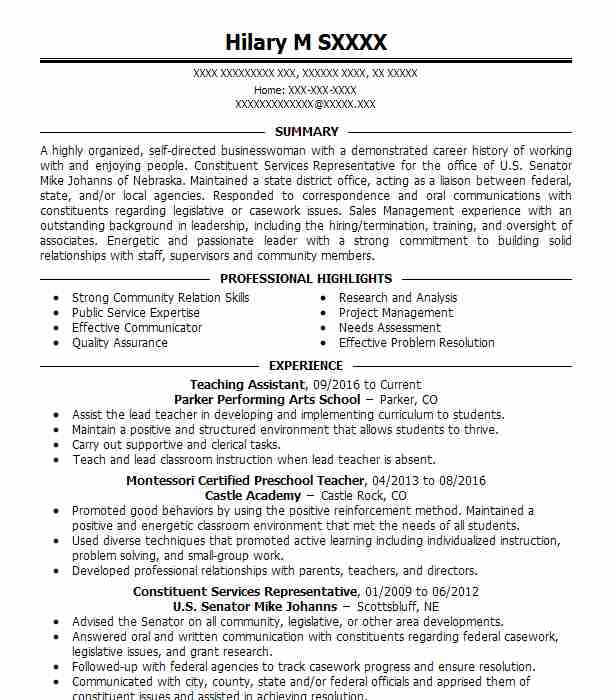 Create My Resume  Teacher Resume Summary