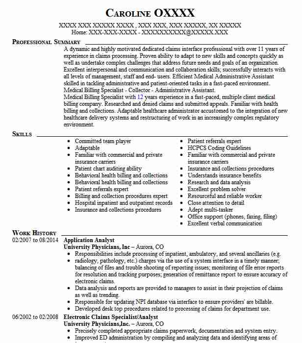 application analyst resume sample