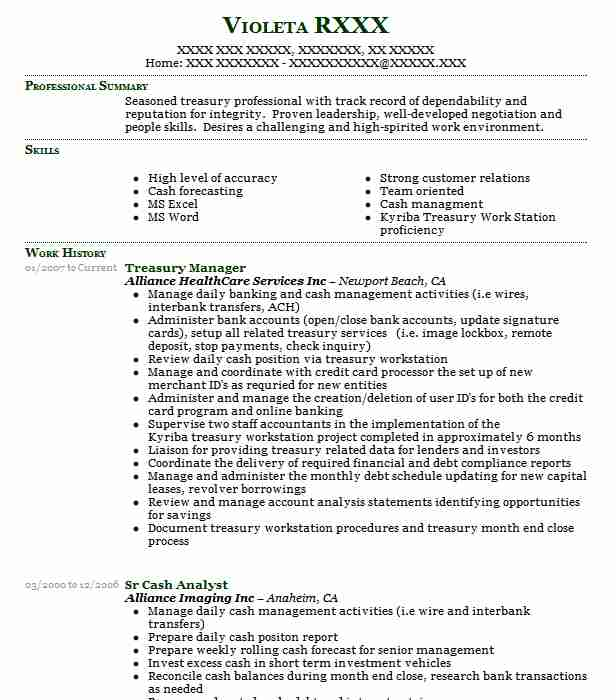 treasury manager resume sample