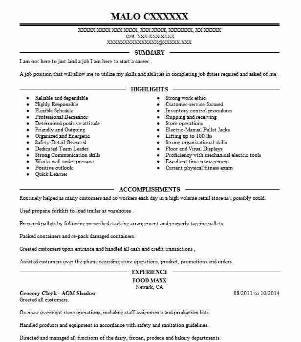 shadow experience resume example mount sinai hospital