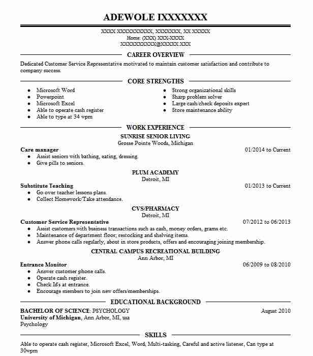 care manager resume sample