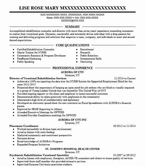 Director Of Vocational Rehabilitation Services Resume Example ...