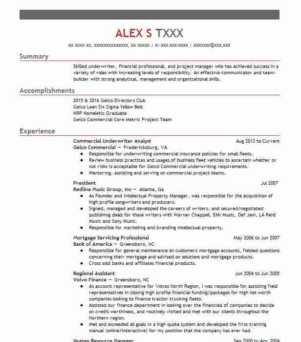 299 Project Management Resume Examples in Virginia | LiveCareer