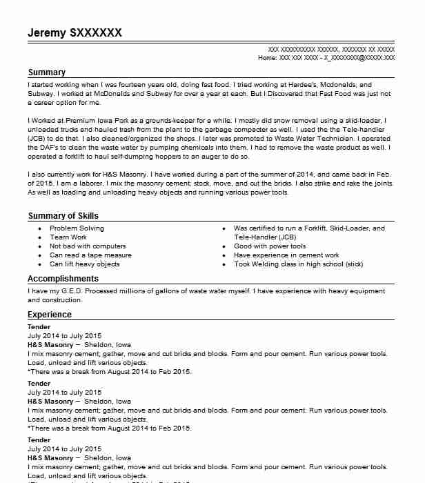 tender resume sample