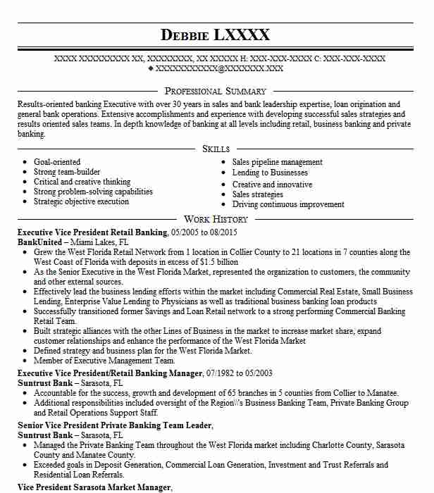 Vice President In Investment Banking Resume Example Bear