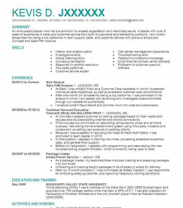 risk analyst resume sample