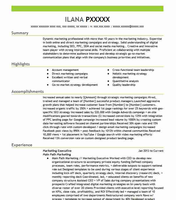 Marketing Executive Resume Example Executive Resumes Livecareer