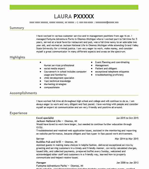 excel specialist resume sample
