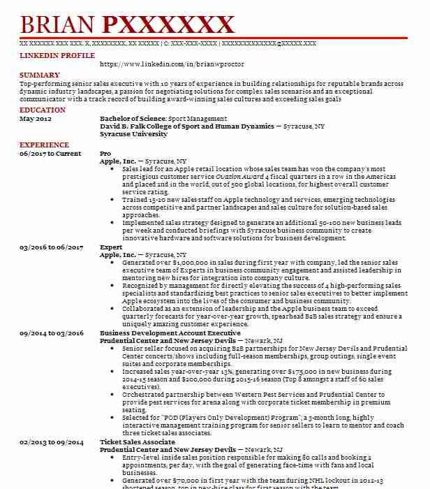 excel expert resume sample