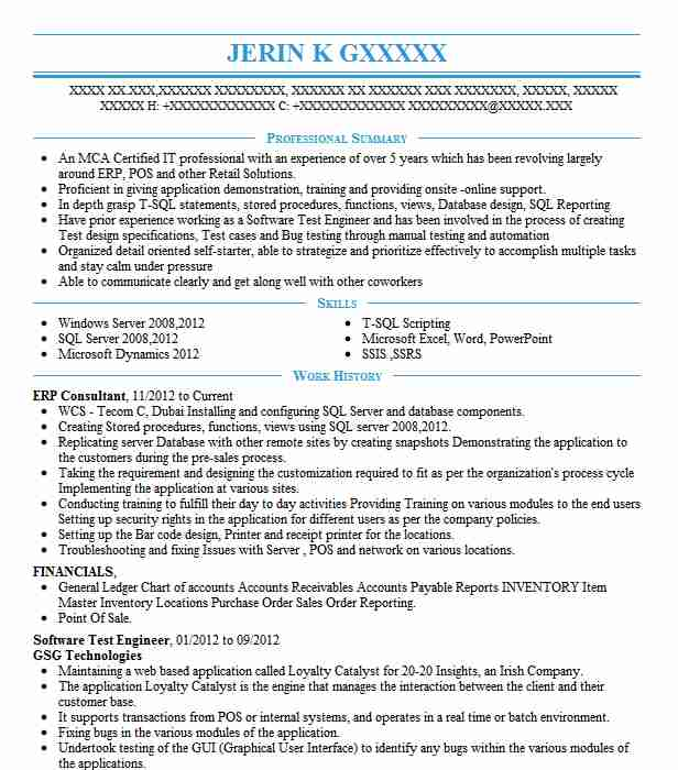 erp consultant resume sample