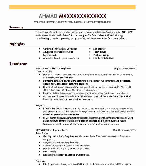 Freelancer Software Engineer Resume Example Itworx - Cairo ...