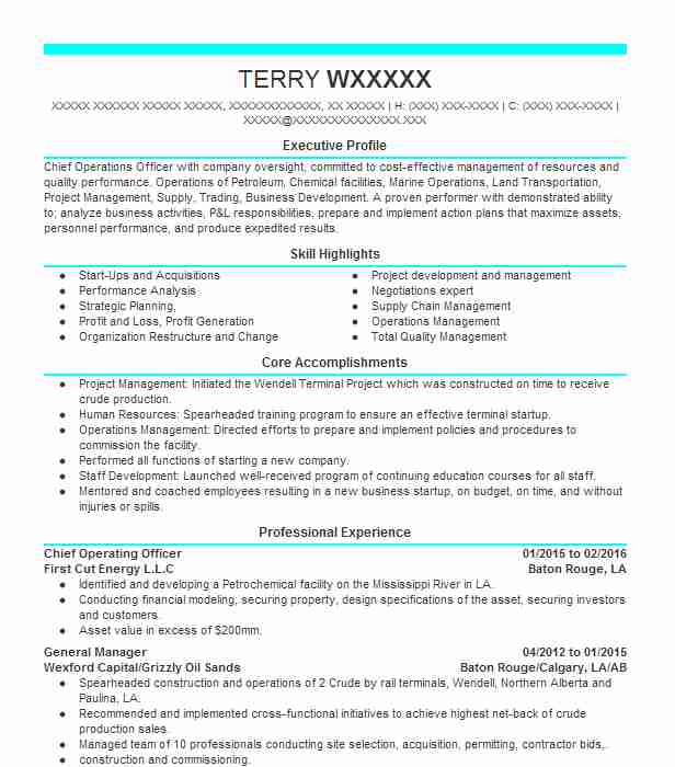 Chief Operating Officer Resume Example Fros Radiation