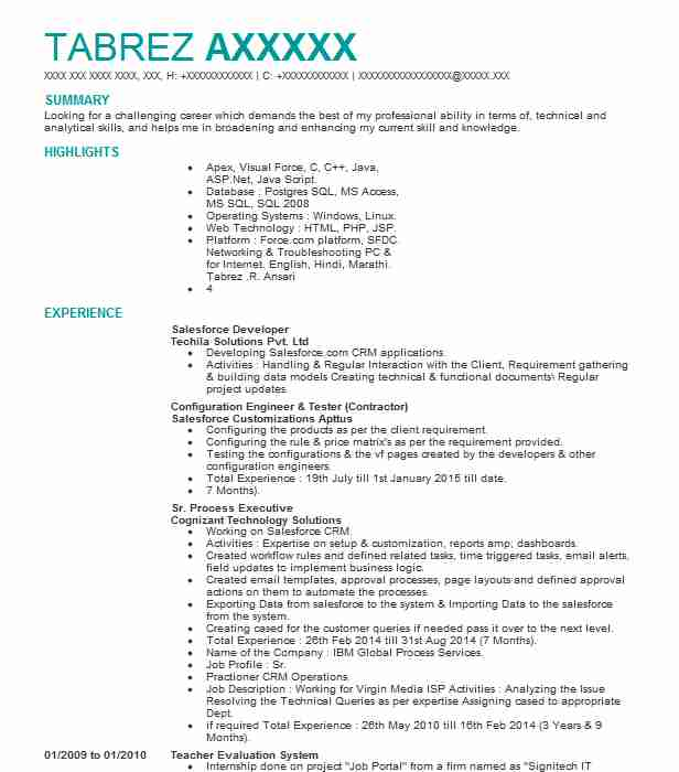 Salesforce Developer Resume Sample | Developer Resumes