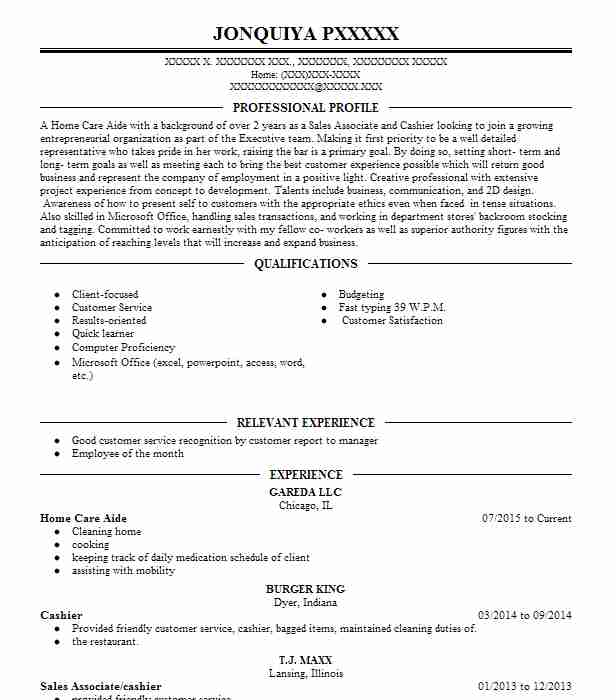 497 playwrights and screenwriters resume examples performing arts