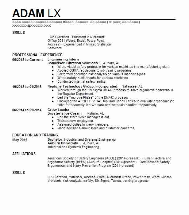 41 Occupational Health And Safety (Engineering) Resume Examples in ...
