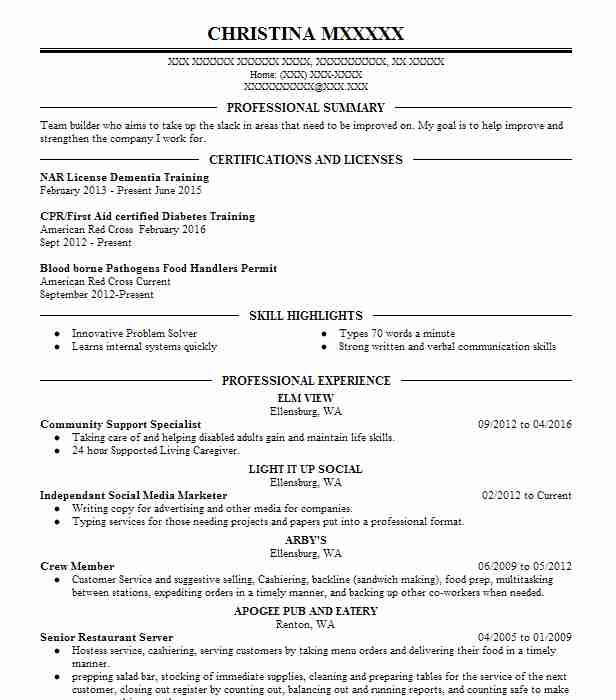 best online marketer and social media resume example