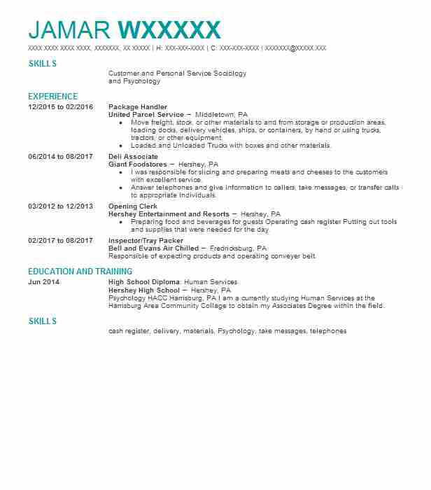Guardianconservator case manager resume example lutheran social package handler yelopaper Image collections