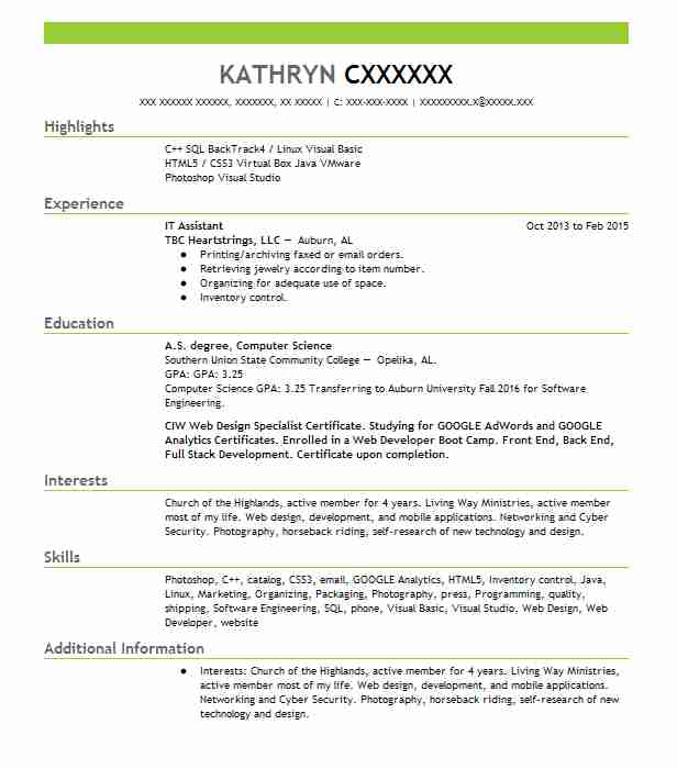 It Assistant Resume Sample Technical Resumes Livecareer