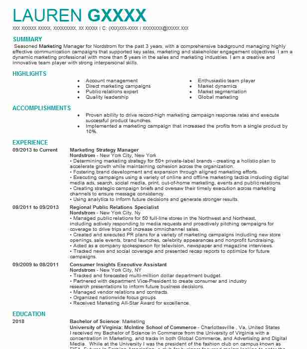 director marketing strategy resume example pelco