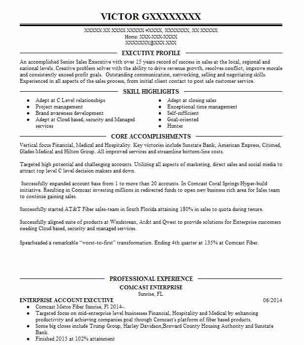 software sales account executive resume  the server cover