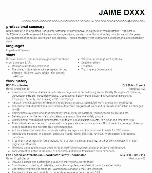 hse coordinator resume sample