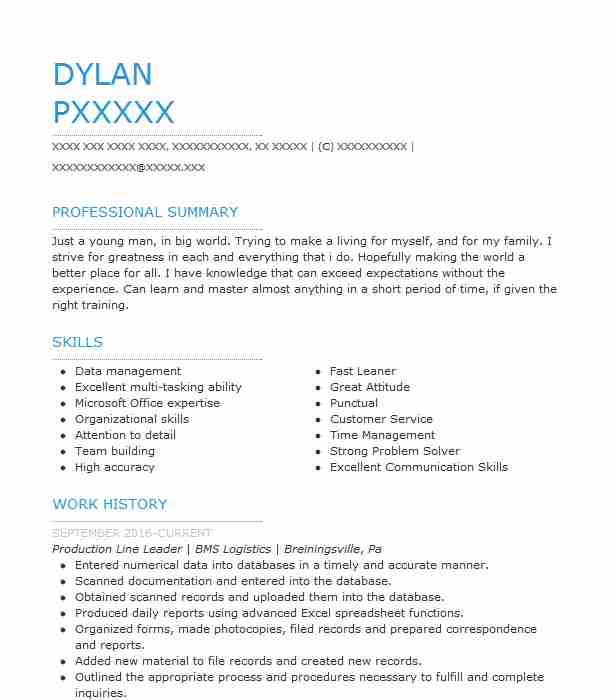 production line leader resume sample