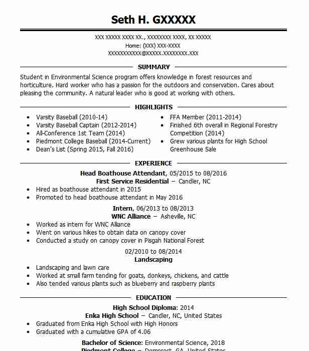 Good Forest Service Forestry Resume