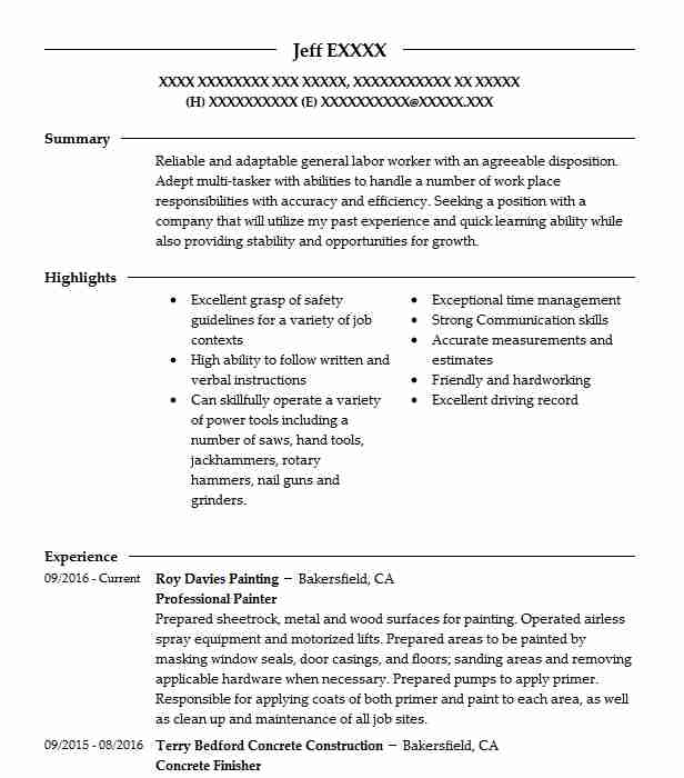 Managing Editor Cover Letter: Professional Painter Resume Sample