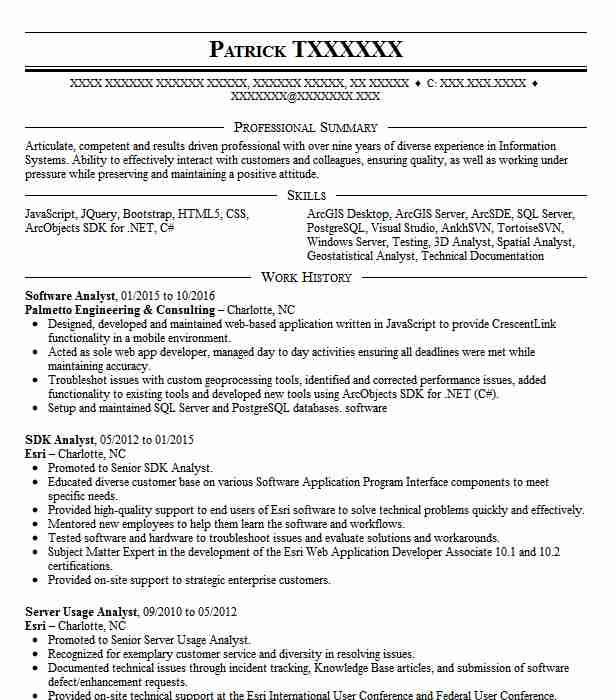 software analyst resume sample