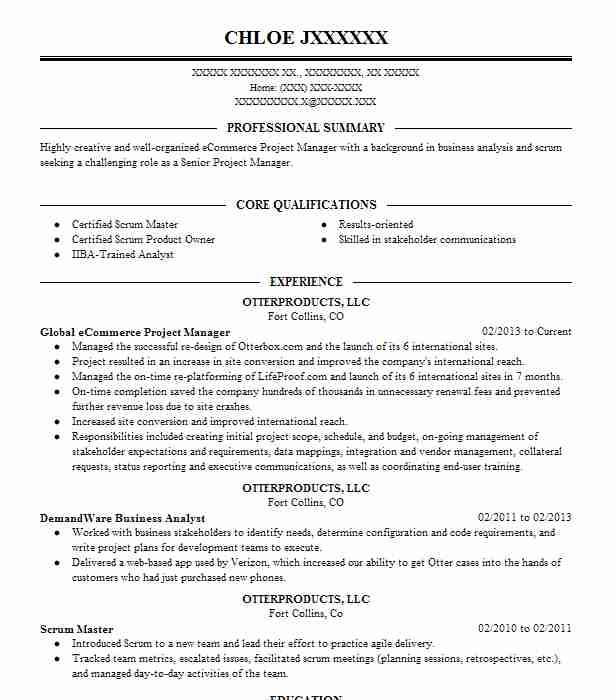 Senior Global Project Manager Resume Example TELEFONICA