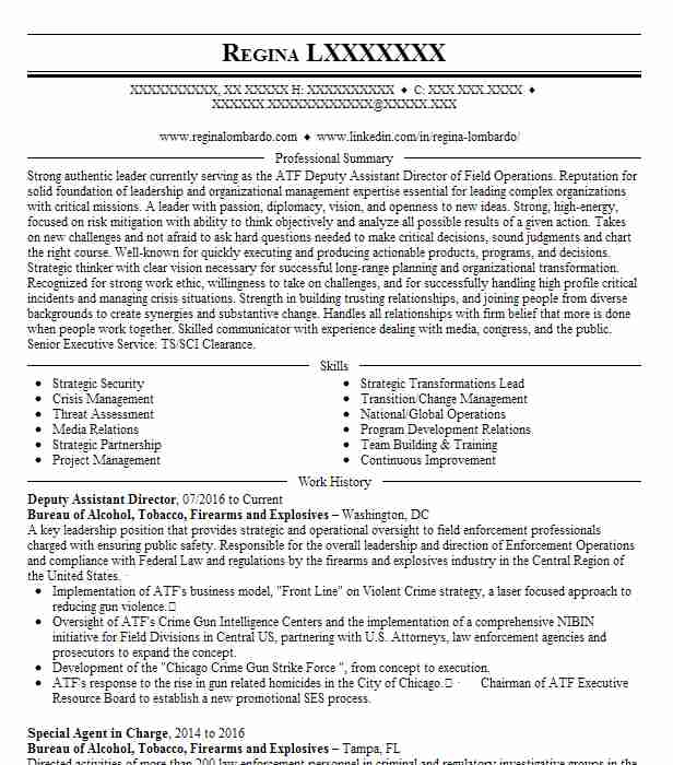 deputy assistant director  gs 15  resume example naval