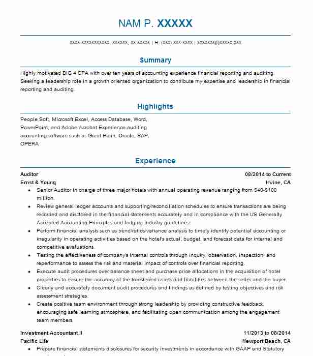 best auditor resume example