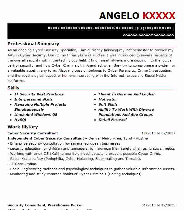 It security consultant resume custome paper writer